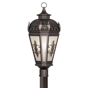 Lindsey Outdoor 3-Light Lantern Head by Darby Home Co