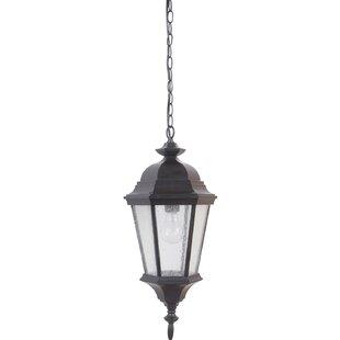 Lorie 1-Light Lantern Pendant by DarHome Co
