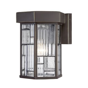 Cochecton 1-Light Outdoor Wall Lantern By Latitude Run Outdoor Lighting