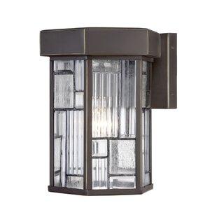 Cochecton 1-Light Outdoor Wall Lantern by Latitude Run