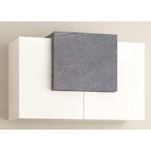 Stenberg 2 Door Storage Cabinet By Brayden Studio