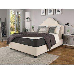 Reviews Stepanie Upholstered Panel Bed with Mattress by Darby Home Co Reviews (2019) & Buyer's Guide