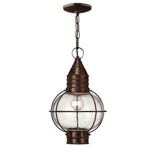Compare Jolie 1-Light Outdoor Hanging Lantern By Longshore Tides