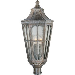 Nussbaum Outdoor 3-Light Lantern Head by Darby Home Co