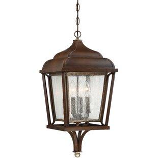 Gracie Oaks Serge 4-Light Outdoor Hanging Lantern