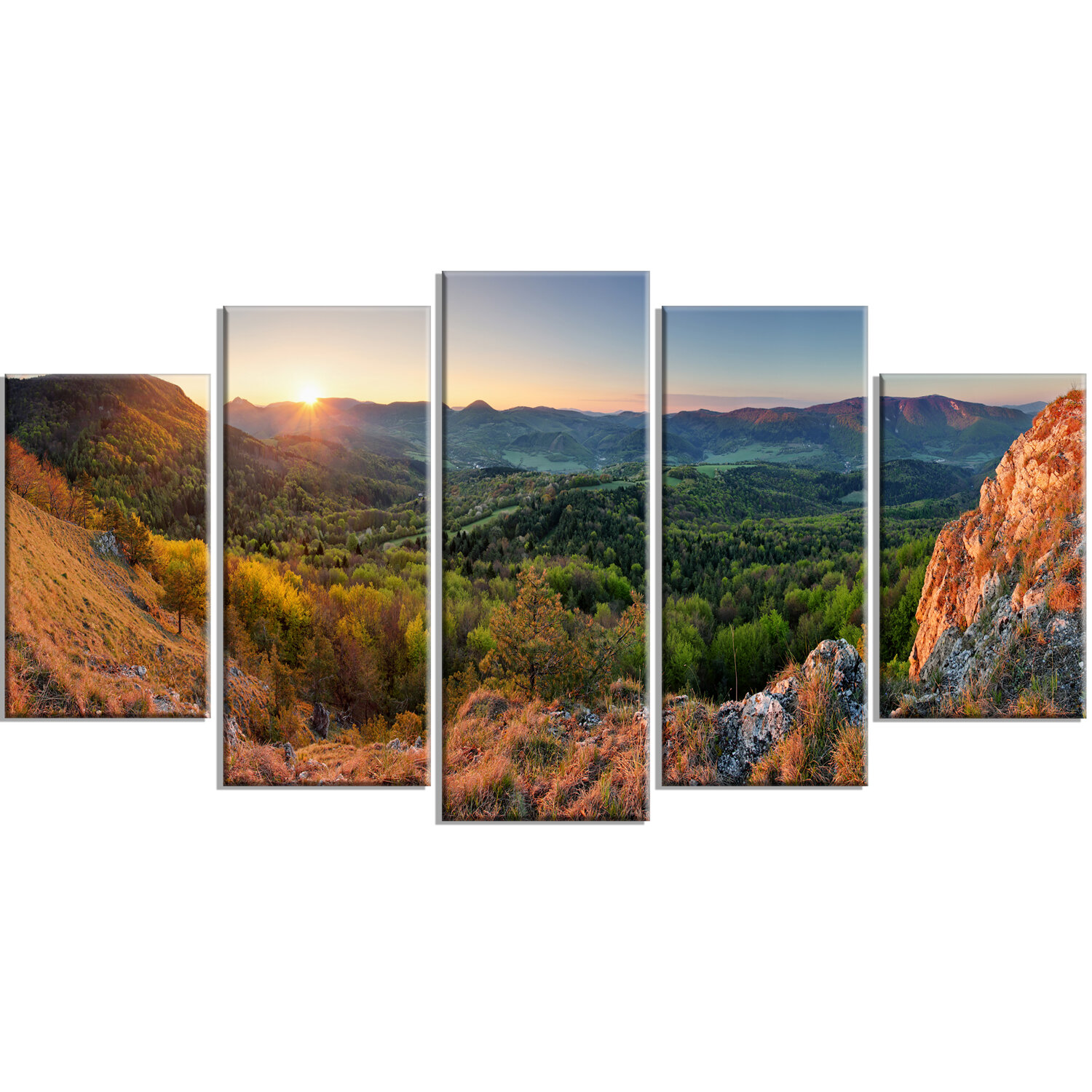 Millwood Pines Spring Forest Slovakia 5 Piece Wall Art On Wrapped Canvas Set Wayfair