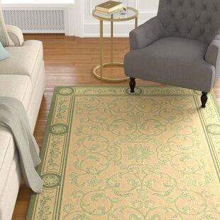 Carsen Natural/Olive Indoor/Outdoor Area Rug
