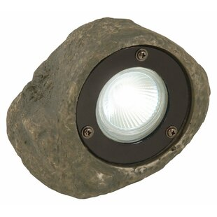 Moonrays 1 Light LED Spot Light