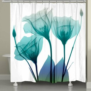 Latitude Run Feder Ombre Bloom Shower Curtain