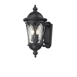 Astoria Grand Lowther 3-Light Outdoor Wall Lantern