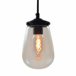 1-Light Novelty Pendant by Westmen Lights