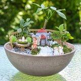 Fairy Garden Kit