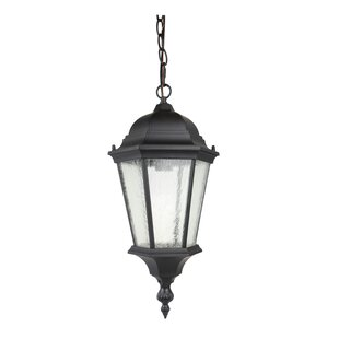 1-Light Outdoor Hanging Lantern By Living District Outdoor Lighting