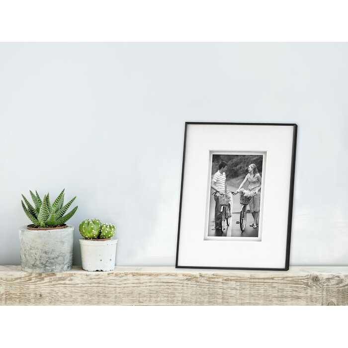 Framatic Fineline Picture Frame with Shadow Mat | Wayfair.ca