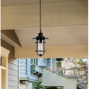 Norgren 1-Light Outdoor Hanging Lantern By Breakwater Bay Ceiling Lights