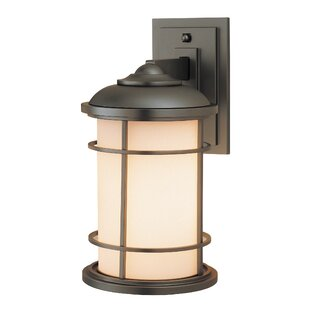 Georgia 1-Light Outdoor Wall Lantern By Latitude Run Outdoor Lighting