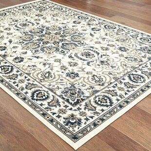 Salerno Traditional Medallion Ivory/Navy Indoor/Outdoor Area Rug