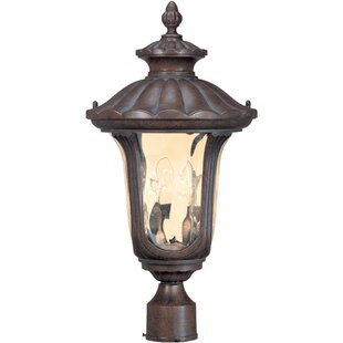 Goines 2-Light Lantern Head by Astoria Grand