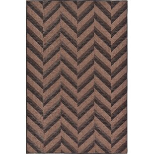 Jordan Brown Indoor/Outdoor Area Rug