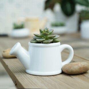 Brashear Ceramic Cachepot By 17 Stories