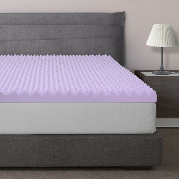 Alwyn Home Gilkes Egg Crate Memory Foam Mattress Topper