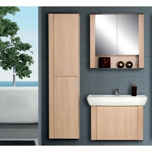 Fichera 53 Single Bathroom Vanity Set with Mirror and Cabinet by Ivy Bronx