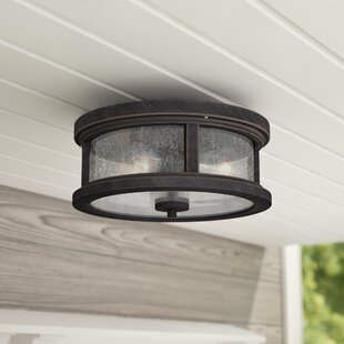 Gracie Oaks Colwyn 2-Light Outdoor Flush Mount