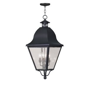 Great Price Goodhue 4-Light Outdoor Hanging Lantern By Alcott Hill