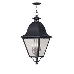 Savings Goodhue 4-Light Outdoor Hanging Lantern By Alcott Hill