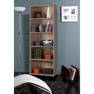 Review Ohanion Bookcase