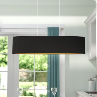 Wade Logan Newville 2-Light Pendant