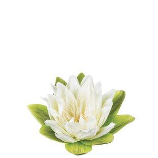 Faux Lotus Wayfair