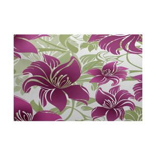Purchase Costigan Purple Indoor/Outdoor Area Rug By Bay Isle Home