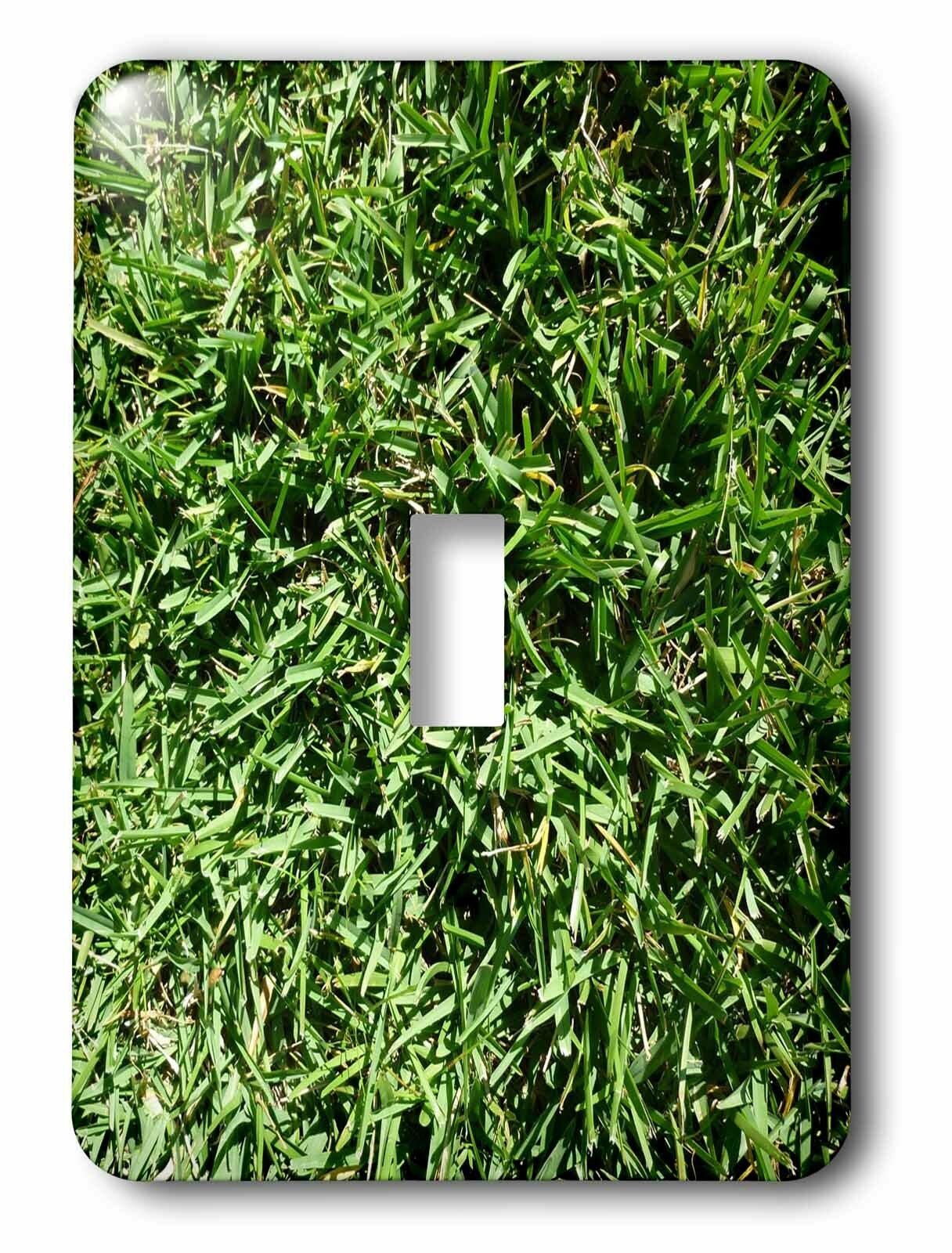 3drose Switch Grass 1 Gang Toggle Light Switch Wall Plate Wayfair