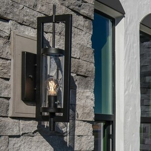 Aureliana Medium 1-Light Sconce