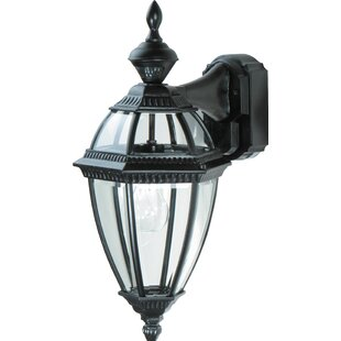 Pulaski 1-Light Outdoor Wall Lantern by Darby Home Co