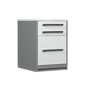 Ebern Designs Rivas 2-Drawer V..
