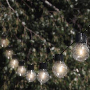 Nitebulbs 20 ft. 10-Light Globe String Light
