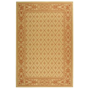 Herefordshire Natural / Terra Indoor/Outdoor Area Rug