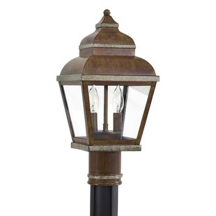 Top Saniyah Outdoor 2-Light Lantern Head By Bloomsbury Market