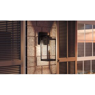 Gracie Oaks Viles Outdoor Wall Lantern