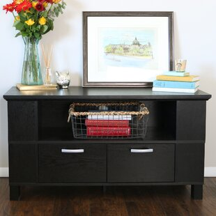 Donovan TV Stand for TVs up to 48