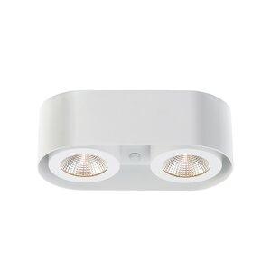 Orren Ellis Stultz 2-Light LED Directional and Spotlight