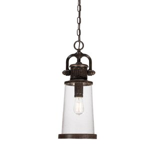 Orr 1-Light Outdoor Hanging Lantern