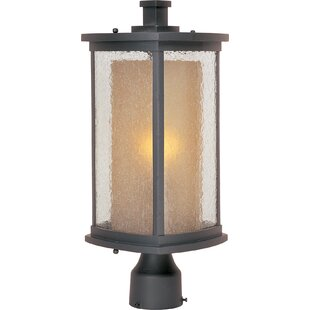 Oroville Outdoor 1-Light Lantern Head