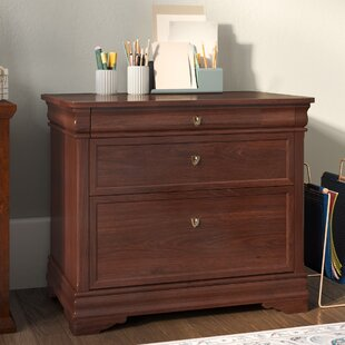 Three Posts Flannagan 2 Drawer Filing Cabinet