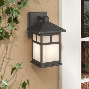 Loon Peak Burtundy 1-Light Outdoor Wall Lantern