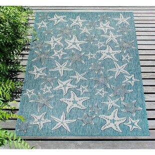 Desantiago Starfish Aqua Indoor/Outdoor Area Rug