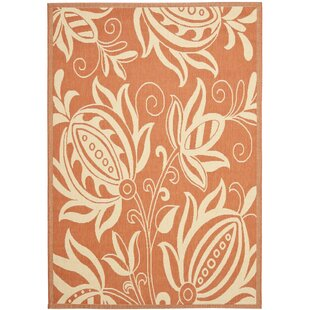 Massasoit Terracotta / Natural Indoor/Outdoor Rug