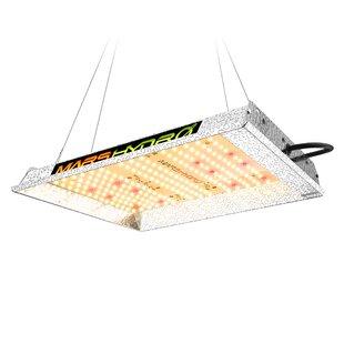 600W LED Full Spectrum Grow Light